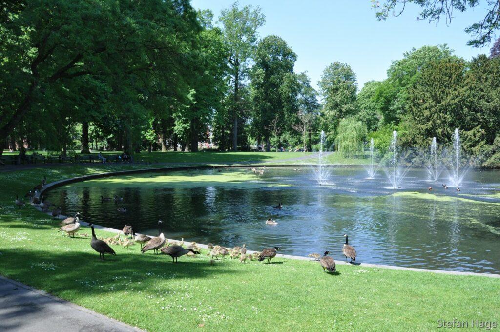 Park Valkenberg Breda