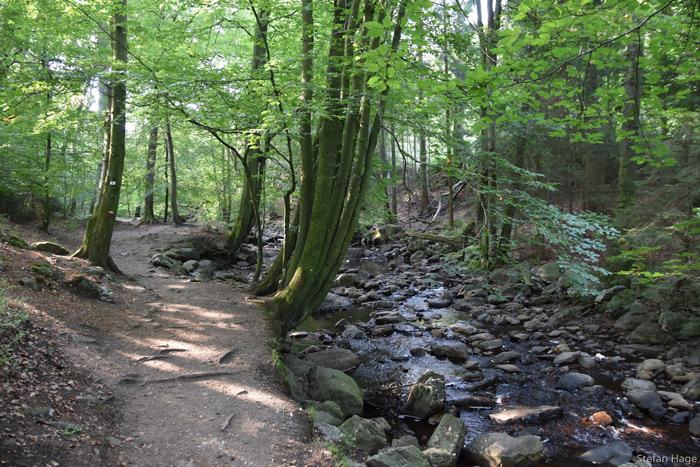 La Hoëgne wandeling