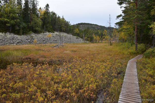 Skuleskogen route