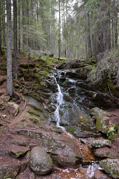 Skuleskogens National Park