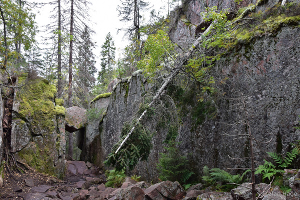 Trollporten Skuleskogen